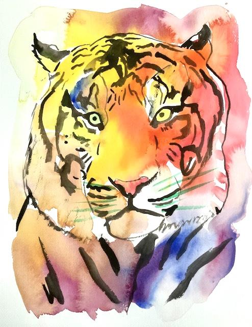Knurhår, tiger, akvarel, Knurhår-tiger