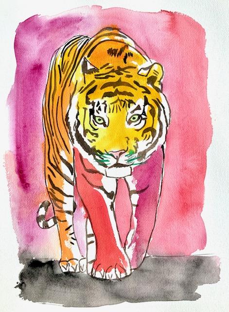 Akvarel, tiger, territorium, fangenskab, zoologisk have, dyrepasser,