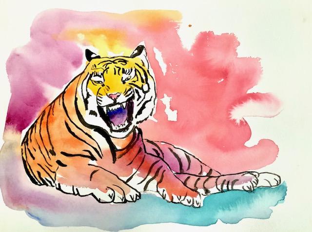Tiger, akvarel, ocelli, øret, blink, kommunikation, ørerne, øjenpletter