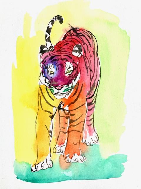 Tiger, akvarel, solidarisk, løve, byttedyr,