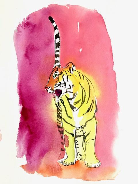 Tiger, akvarel, lille sorte sambo, tigerhale,