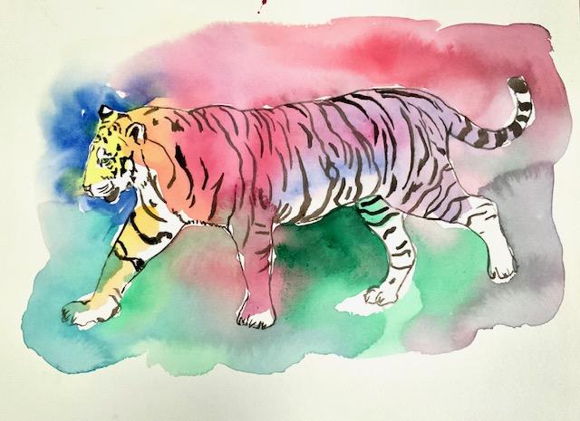 Tiger, akvarel, pil, tigris, spyd, rovdyr, sorte striber, måneskin, tigerpels