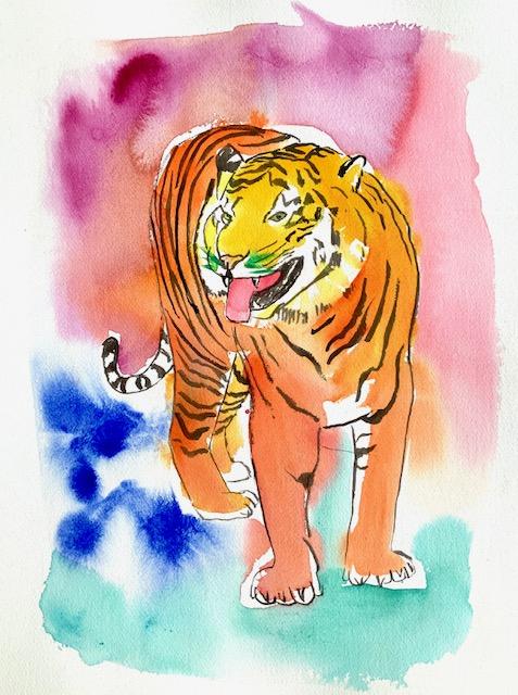 Tiger, akvarel, lugtesans, Flehman-reaktionen, læbe, fortænder, næseborene, næseskillevæg