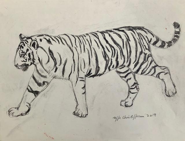 Pil, tigris, spyd, tiger, tegning, orange, rovdyr, striber, sniger, huskatte,