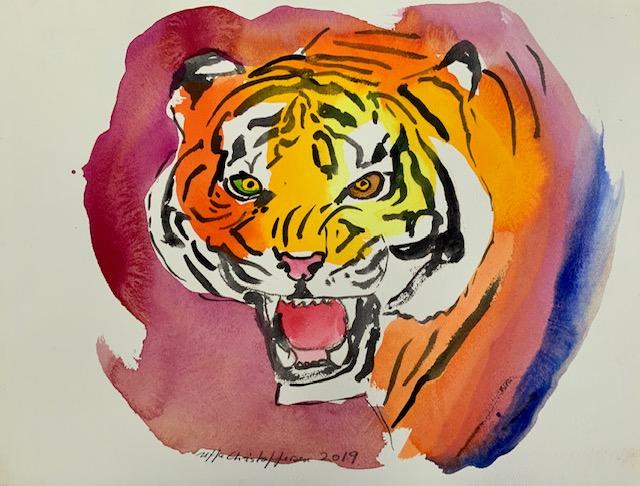 Tigertænder, akvarel, watercolor, hjørnetænder, kød, bytte