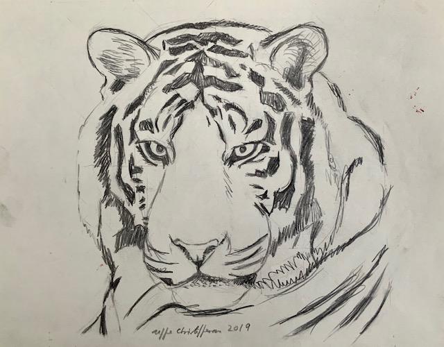 Tiger, tigerstriber, fingeraftryk, tegning, unikke, konge, maskekarakter,