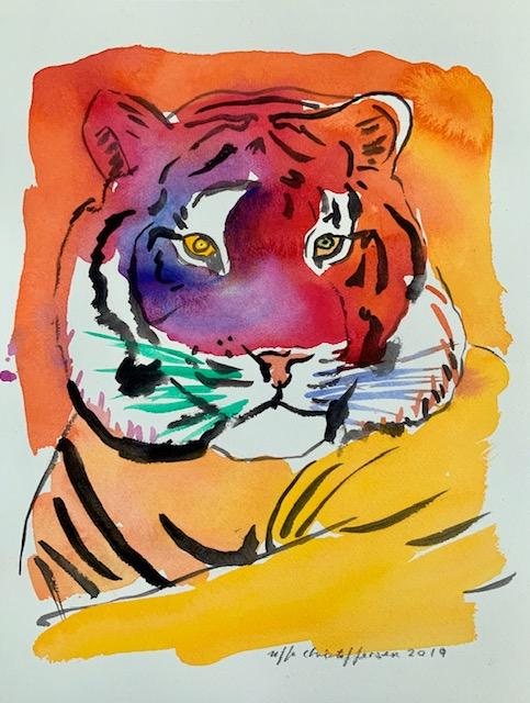 Knurhår, tiger. Akvarel, hjerne, afstande, knurhår-tiger,