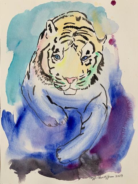 Hvid tiger, akvarel, tiger, akvarelteknik, papir, rødbrune, striber, lyserød, snude, albino, gen, feomelanin,