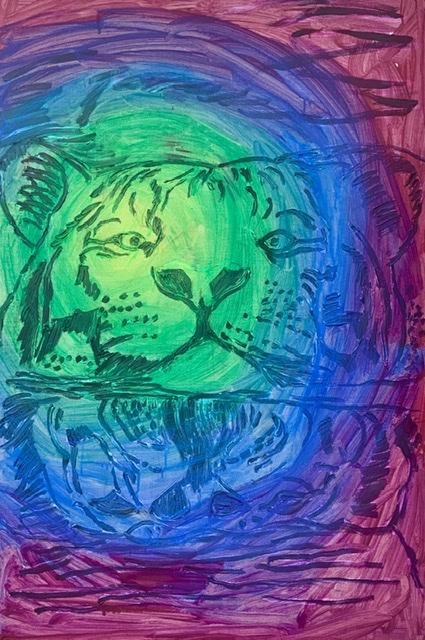 Vand, tiger, svømme,