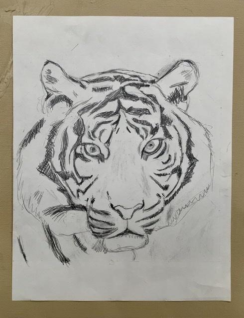 02. TEGNING. 2020. 27,5x35,5 cm. Tigermaleren Uffe Christoffersen. Atelier-Kaiserborgen