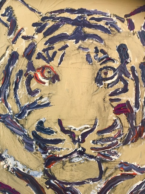 Sorte Tigerstriber